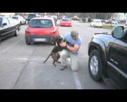 Dog Welcomes Home Soldier Dad. Excited Is An Understatement!