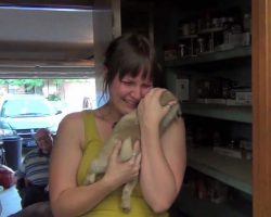Surprise Pug Puppy!! [TOUCHING]