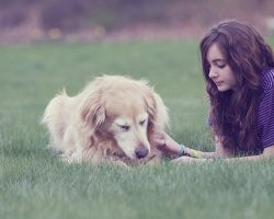 20 Most Important Reminders For All Dog Owners. #20 Will Bring You To Tears…