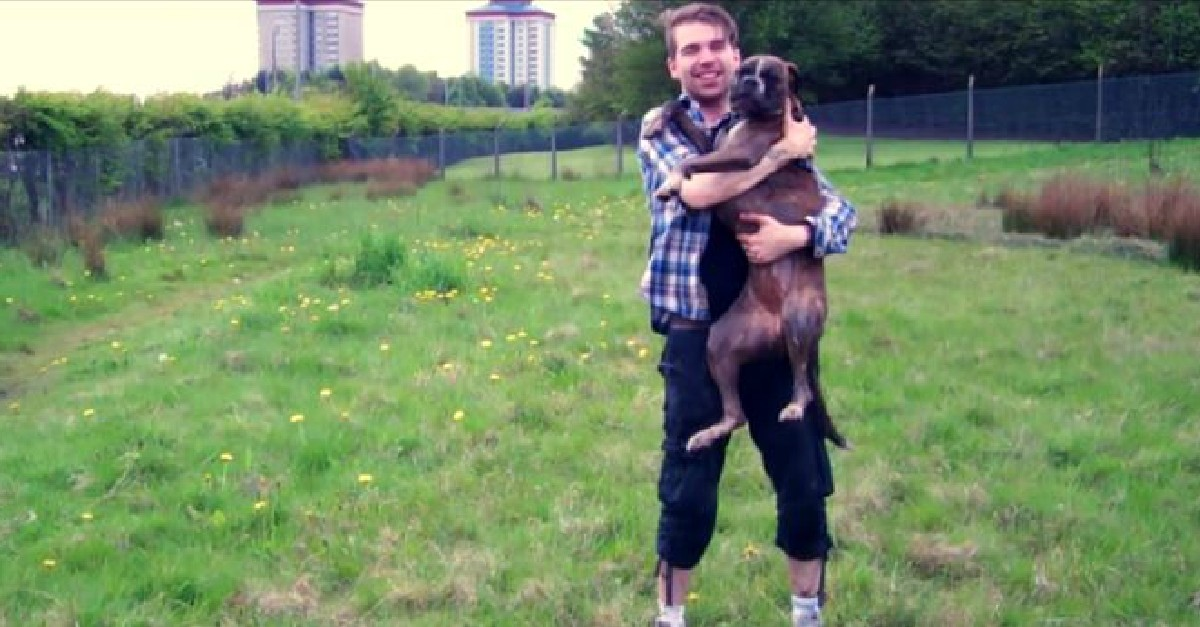 Must See Video If You Have A Dog You Love. It Will Make You Laugh, Cry & Love Your Dog Even More!