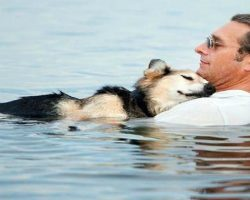 OMG, Schoep's Story Is A Tearjerker! This Is What Love And Trust Truly Is..