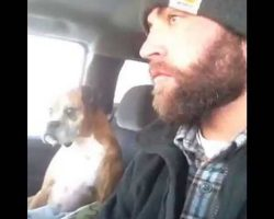 OMG… If Looks Could Kill… This Boxer's Reaction Is Hilarious!