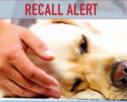 BREAKING NEWS: New Pet Food Recall Due to Salmonella and Listeria Risks
