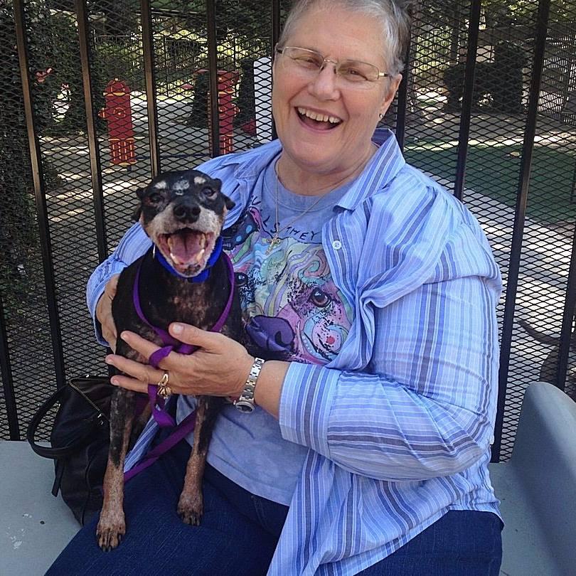 Source: Front Street Animal Shelter – City of Sacramento