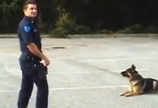 Everyone Is Surprised When He Does THIS To His Police Dog… WOW!