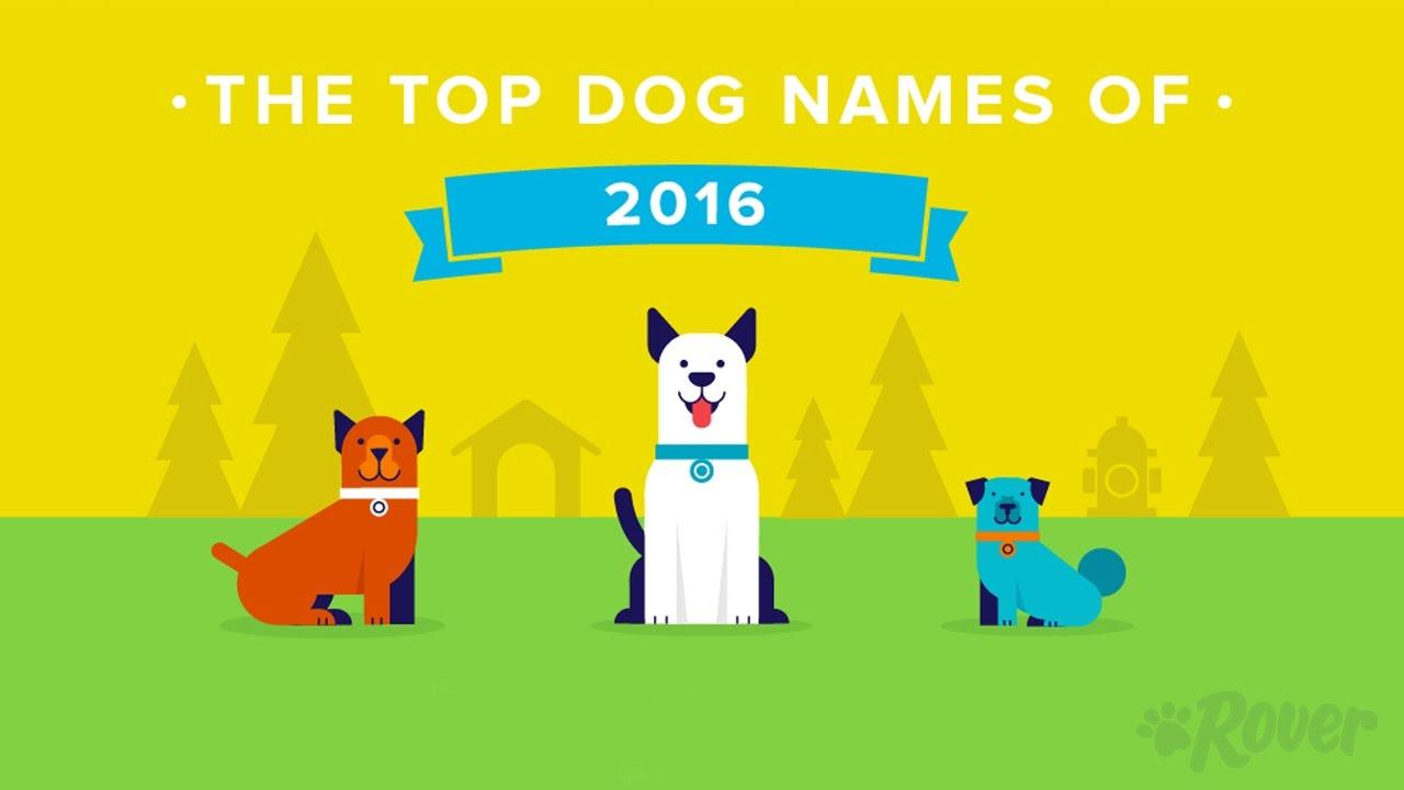 annoying pet names