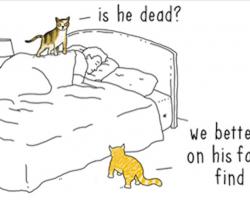 If Animals Could Talk (10+ Pics)
