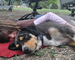 5 Signs That Your Dog Actually Loves You