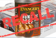 Dog Food Company Issues Recall After Deadly Drug Is Found In Their Products