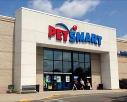 URGENT: PetSmart & Companion Dog Food Recalls – MUST READ