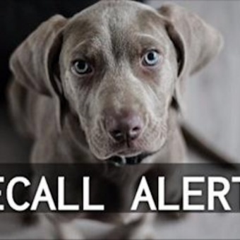 RECALL ALERT: Another Dog Food Brand Orders Recall After Possible Euthanasia Drug Contamination