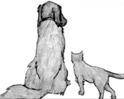 A Goodbye Letter From Your Pet