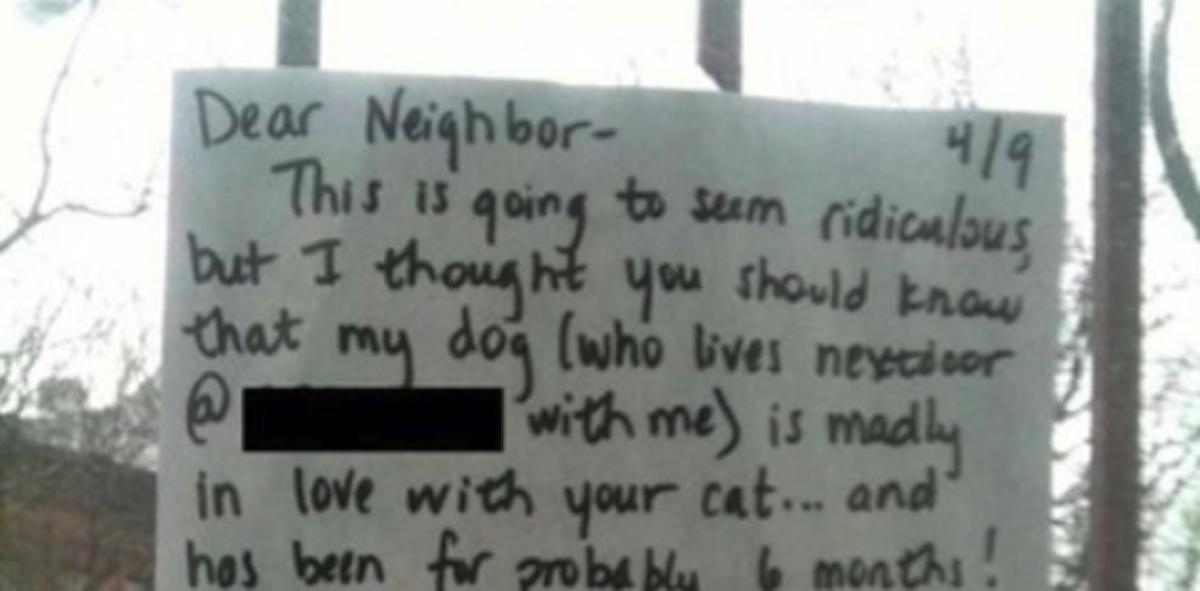 Heartbroken Dog Prompts Owner To Write A Note To The Neighbors