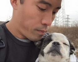 Man risks his life repeatedly to save hundreds of dogs from China's underground meat trade