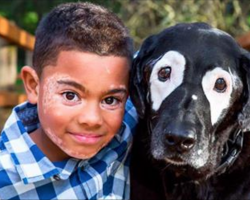 Boy with rare skin condition feels like an outcast. Then he meets a dog who can relate