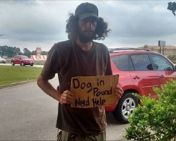 "She sees homeless man holding sign that says ""Dog in pound,"" pays the fee and reunites them"