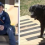 Mailman spots a change in the dog that sees him daily. Then he catches what the owners are up to