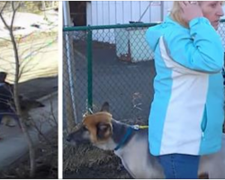 Security camera captures woman stealing family's dog. Then watchful neighbors track her down