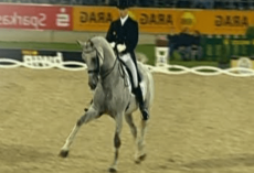 Horse Starts Trotting, But Watch When The Music Changes — 16 Million Peoples Jaws Dropped!