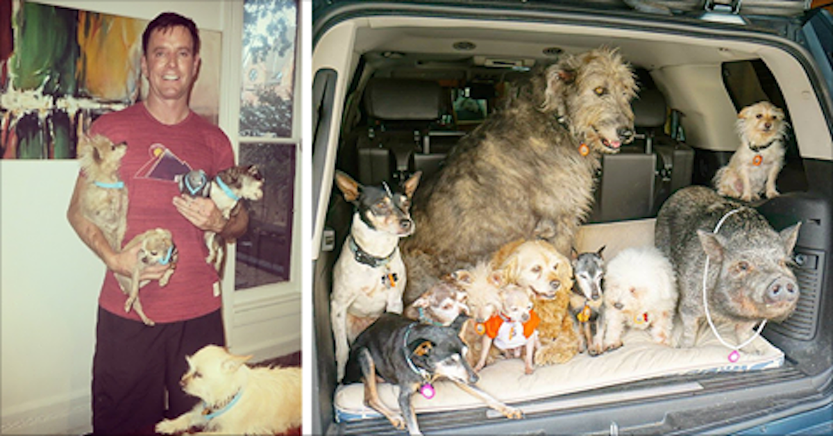 Man devotes his life to adopting old dogs who can t find for Did congress approve killing hibernating bears