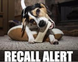 RECALL ALERT: Multiple Brands Of Dog Chews Recalled