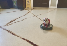 Roomba Runs Over Dog Poop At 1:30 AM