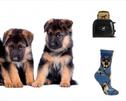 20 Items All German Shepherd Lovers NEED To Have