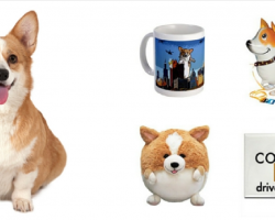 18 Things All Corgi Lovers NEED To Own
