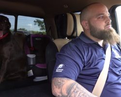 Army Veteran Can't Leave House Because Of PTSD, But His Chocolate Labrador Helps Him Every Day