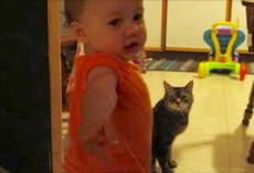 Dad captures the morning routine between his daughter and cat—and it's too adorable