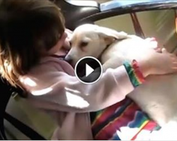 Dog's Emotional Reaction After Being Saved From Euthanasia Is Beautiful To Watch