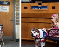 Little girl testifies against her abuser. When he walks in, she gives her deaf dog a signal