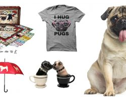 25 Things All Pug Lovers NEED To Have