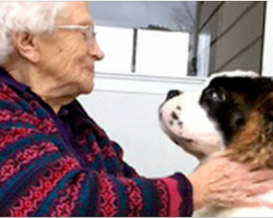 92-Year-Old Widow Finds Joy And Companionship In Neighbor's Puppy After Living Alone For 27 Years