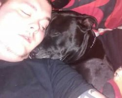 He Decides To Take His Own Life, Then Realizes What's Inside His Dog's Mouth…