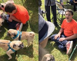 Boy With Autism Who LOVES Pugs Gets The Best Birthday Surprise