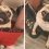 This Pug Is So Clingy He Refuses To Let His Owner Go To The Toilet Alone
