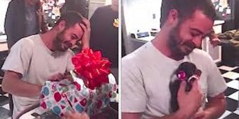 Depressed Marine Veteran Overcome With Emotion When He Gets Christmas Puppy Surprise