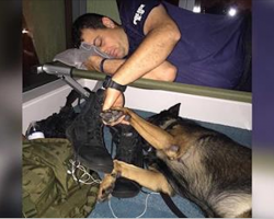 Cop falls asleep gripping K9 partner's hand, reminds world of their sacrifice fighting hurricane