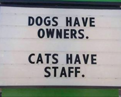9 Genius Vet Signs That Every Pet Owner Can Relate To