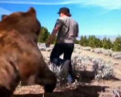 Man Saves an Abandoned Bear Cub – 6 Year later Gets A Jaw-Dropping Surprise At The Reunion