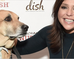 Rachael Ray Gave $1M To Hurricane Victims. But Her Donation Is Different Than Everyone Else's