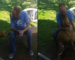 Confused dog barks at the strange man in his garden… before he realizes it's actually his owner who's lost 51lb after five weeks in hospital