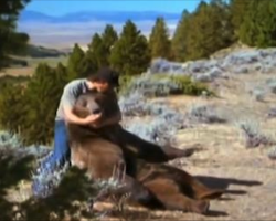 He found a bear cub lying next to his dead mother. What Followed Is Beyond Words.