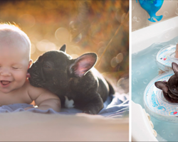 Dog And Baby Born On The Same Day Do Everything Together