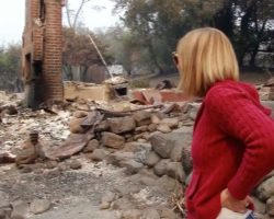 Woman Thinks Cat Died In Wildfire. Here's The Tearful Moment They Find Her In The Ruins