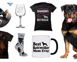 20 Items That All Rottweiler Lovers Need To Have