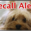 Breaking News: Dog Food Recall Just Issued!