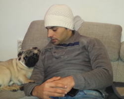 Adorable Pug Wants To Cuddle. Watch What Happens When Dad Moves Away…