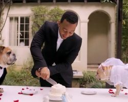 Want to see the most adorable wedding that John Legend has ever sung at? Check this out!
